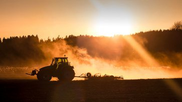 Identifier les alternatives au glyphosate